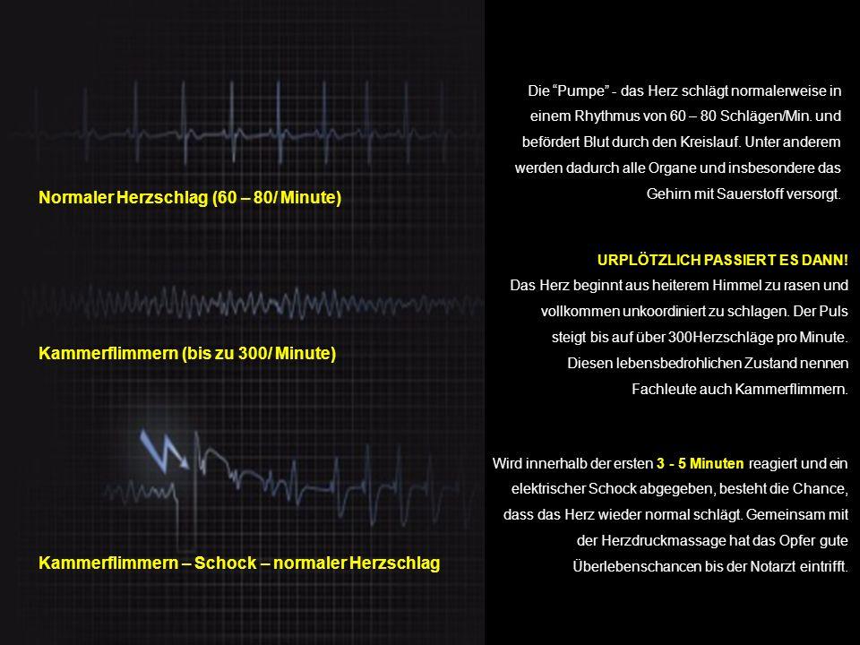 Normaler Herzschlag (60 – 80/ Minute)
