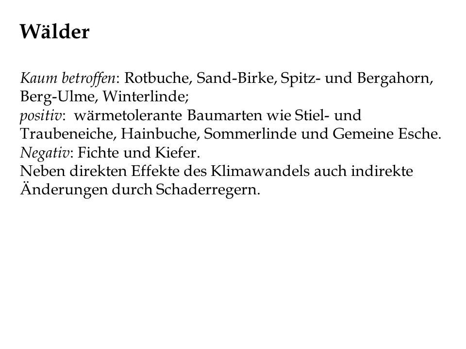 Wälder Kaum betroffen: Rotbuche, Sand-Birke, Spitz- und Bergahorn, Berg-Ulme, Winterlinde;