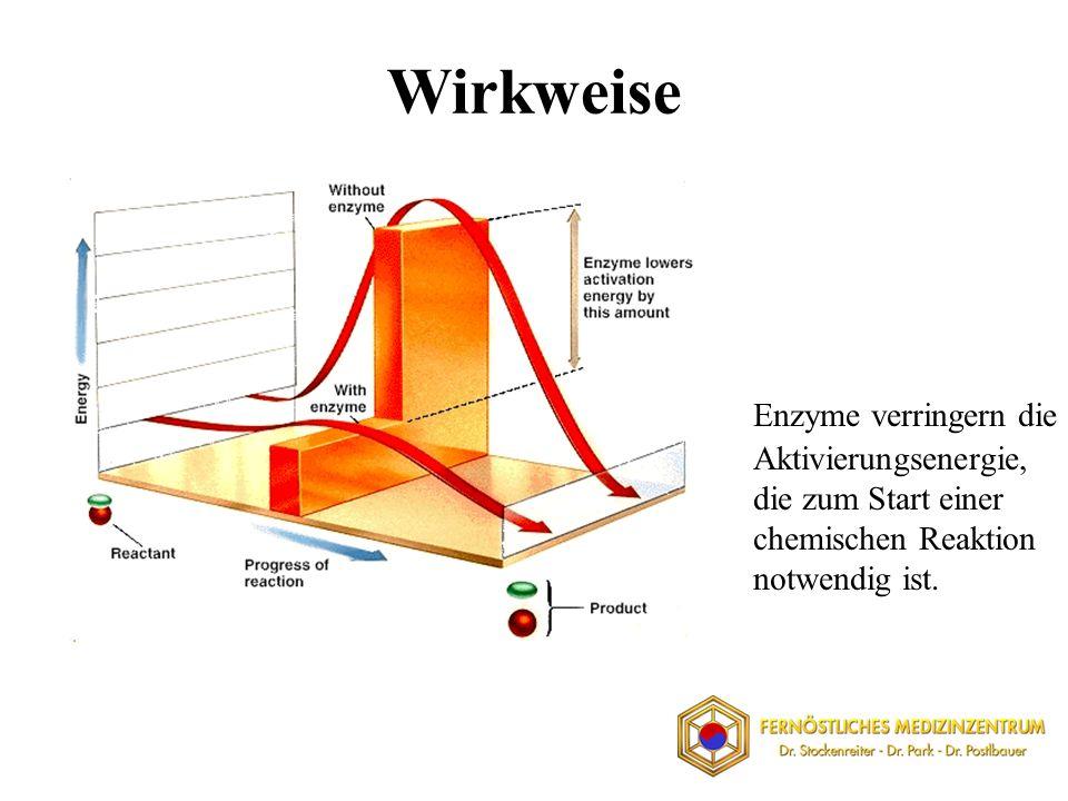 Wirkweise Enzyme verringern die Aktivierungsenergie, die zum Start einer chemischen Reaktion notwendig ist.