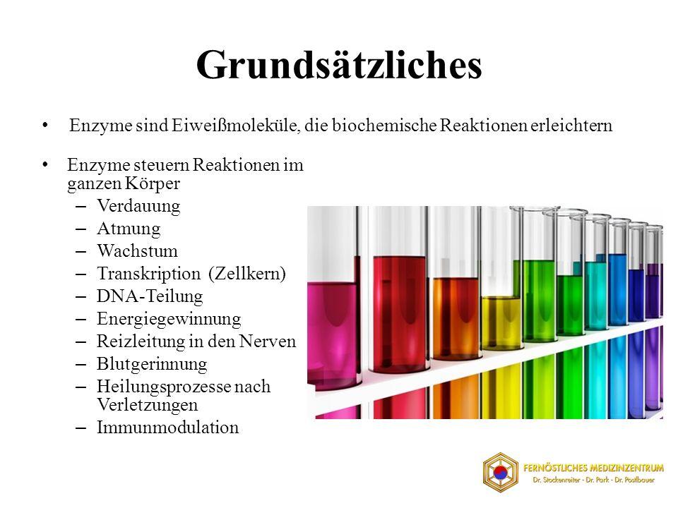 Grundsätzliches Enzyme sind Eiweißmoleküle, die biochemische Reaktionen erleichtern. Enzyme steuern Reaktionen im ganzen Körper.
