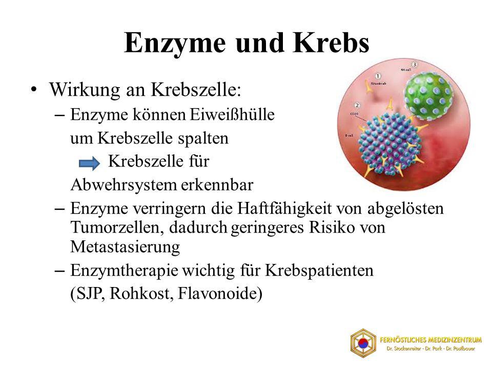 Enzyme und Krebs Wirkung an Krebszelle: Enzyme können Eiweißhülle