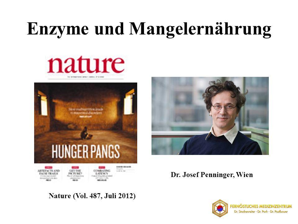 Enzyme und Mangelernährung