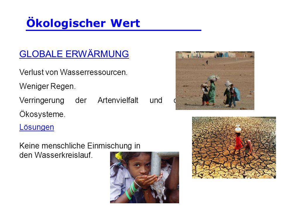 Ökologischer Wert GLOBALE ERWÄRMUNG Verlust von Wasserressourcen.