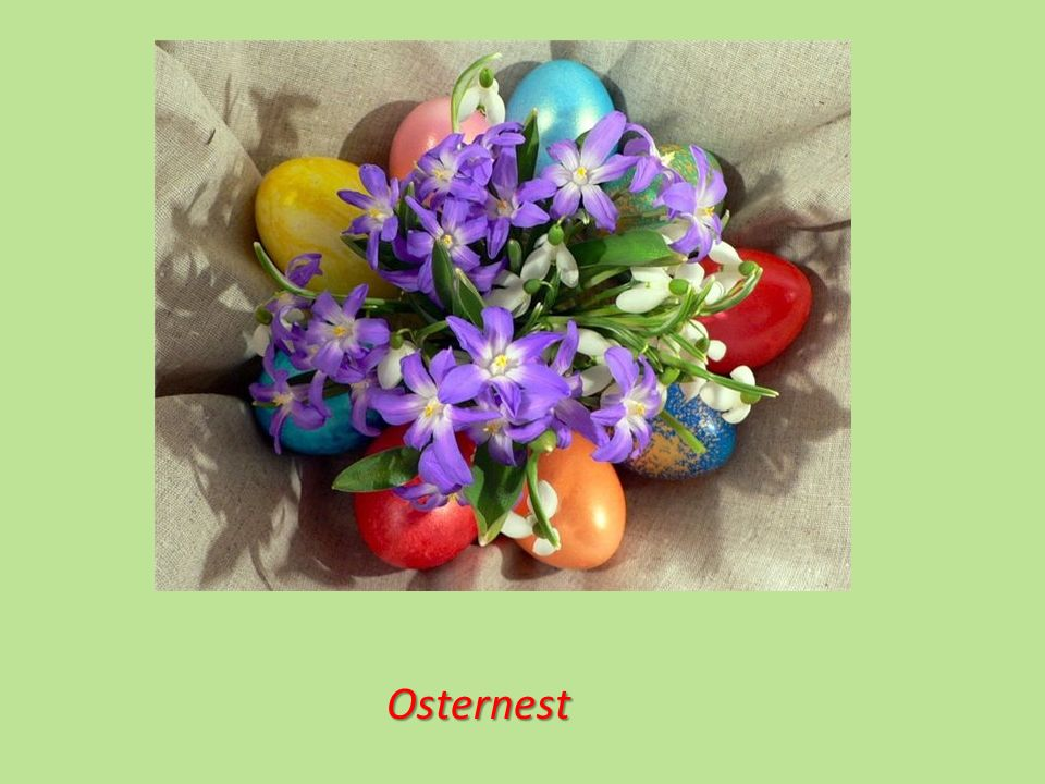 Osternest