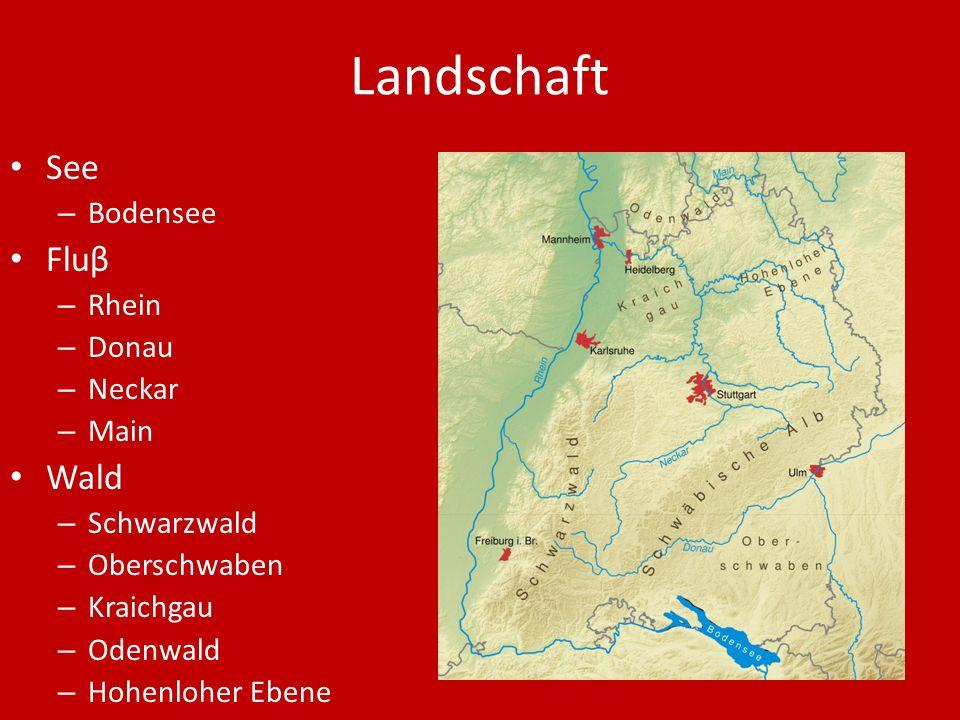 Landschaft See Fluβ Wald Bodensee Rhein Donau Neckar Main Schwarzwald