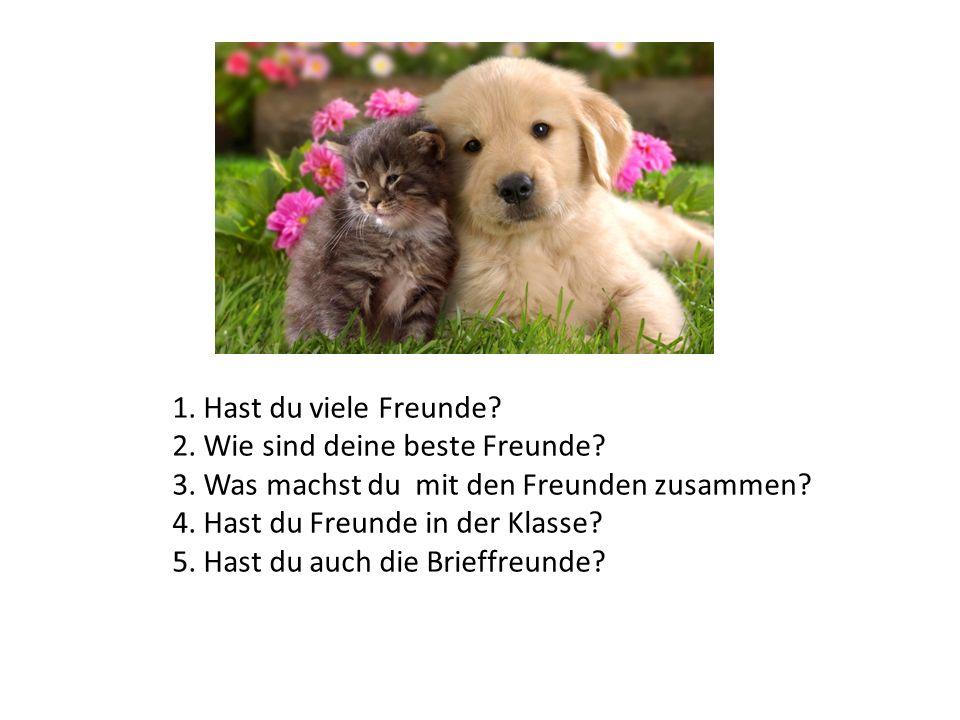 1. Hast du viele Freunde 2. Wie sind deine beste Freunde 3. Was machst du mit den Freunden zusammen