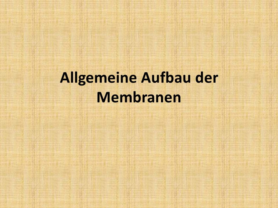 Allgemeine Aufbau der Membranen
