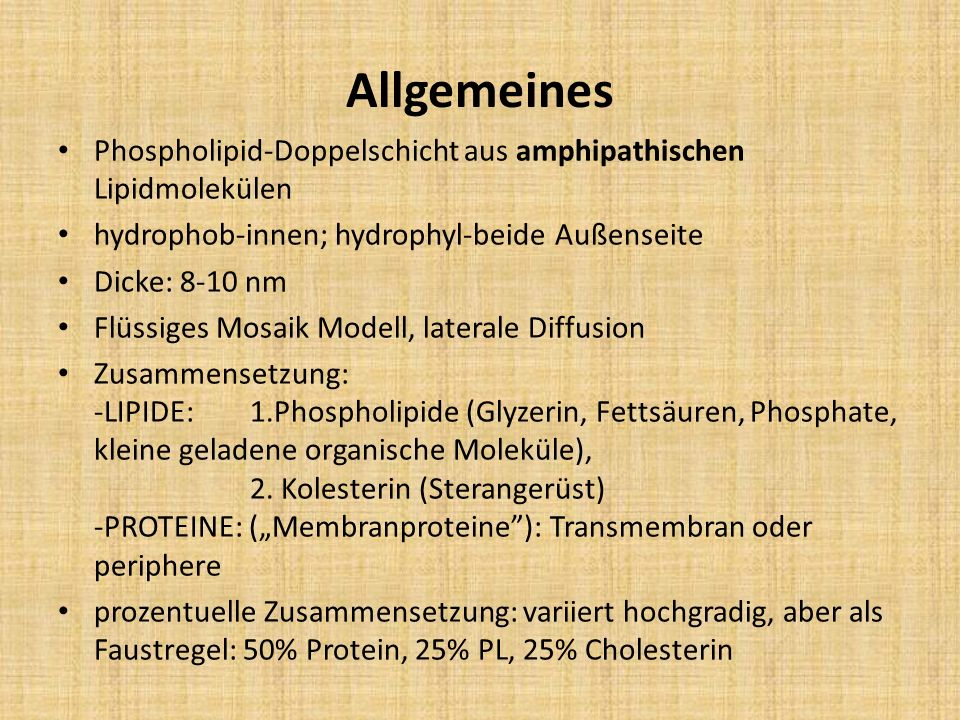 Allgemeines Phospholipid-Doppelschicht aus amphipathischen Lipidmolekülen. hydrophob-innen; hydrophyl-beide Außenseite.