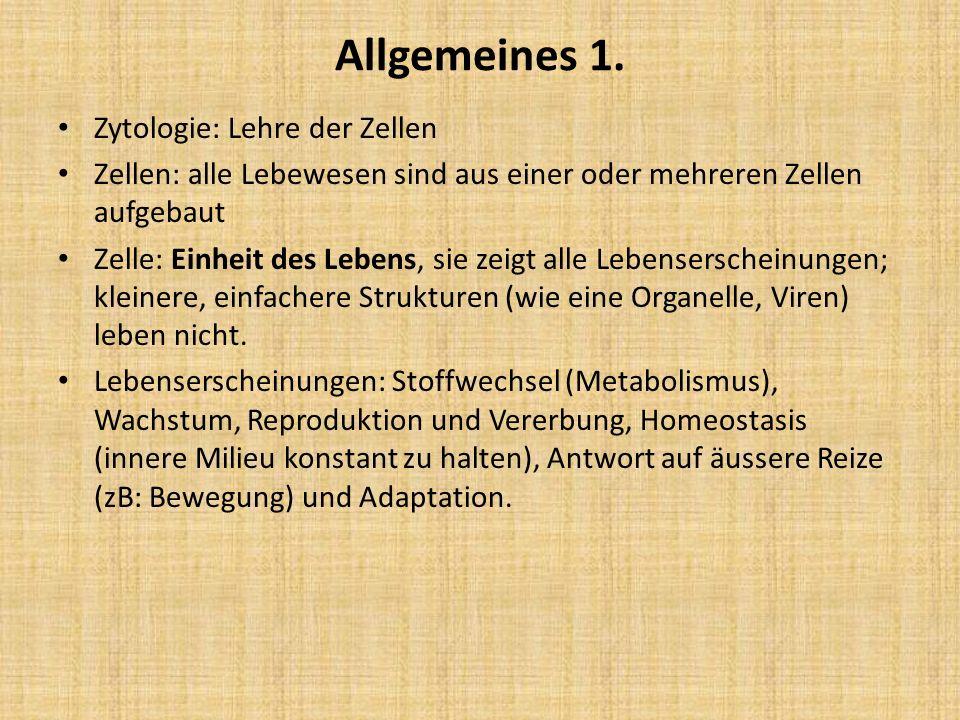 Allgemeines 1. Zytologie: Lehre der Zellen