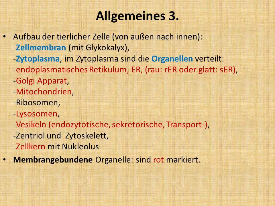 Allgemeines 3.