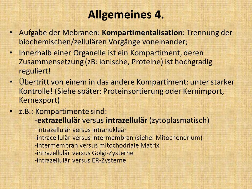 Allgemeines 4. Aufgabe der Mebranen: Kompartimentalisation: Trennung der biochemischen/zellulären Vorgänge voneinander;
