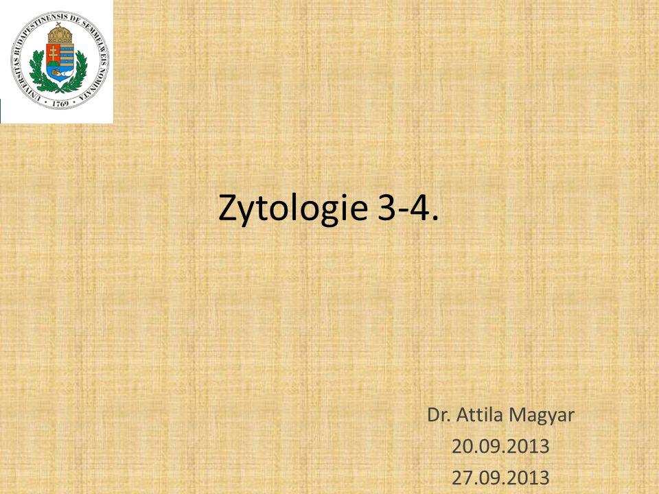 Zytologie 3-4. Dr. Attila Magyar 20.09.2013 27.09.2013