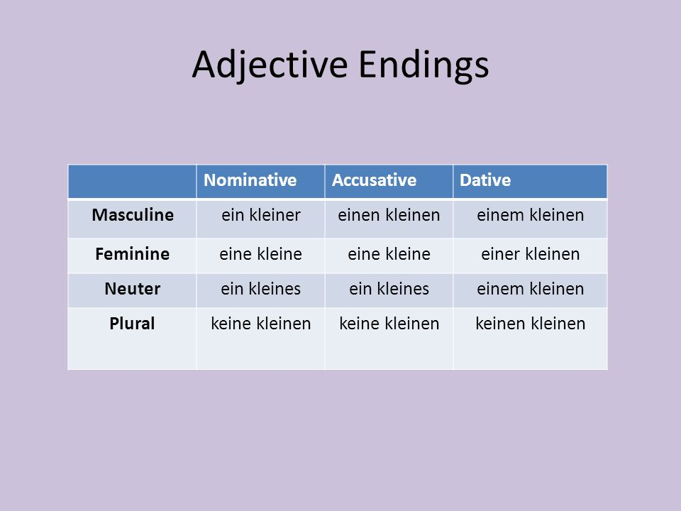 Adjective Endings Nominative Accusative Dative Masculine ein kleiner