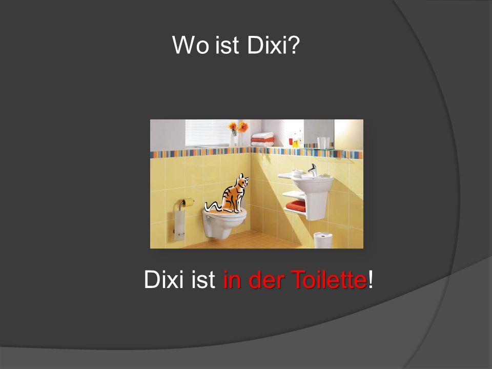 Wo ist Dixi Dixi ist in der Toilette!