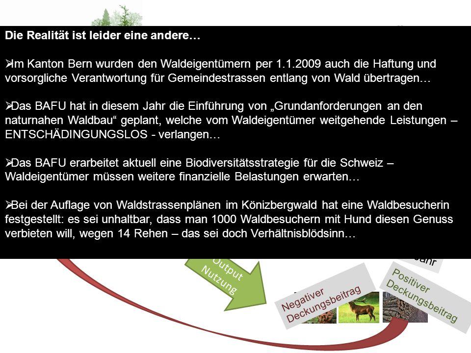 Wald – Eigentumsrechte - Behörden