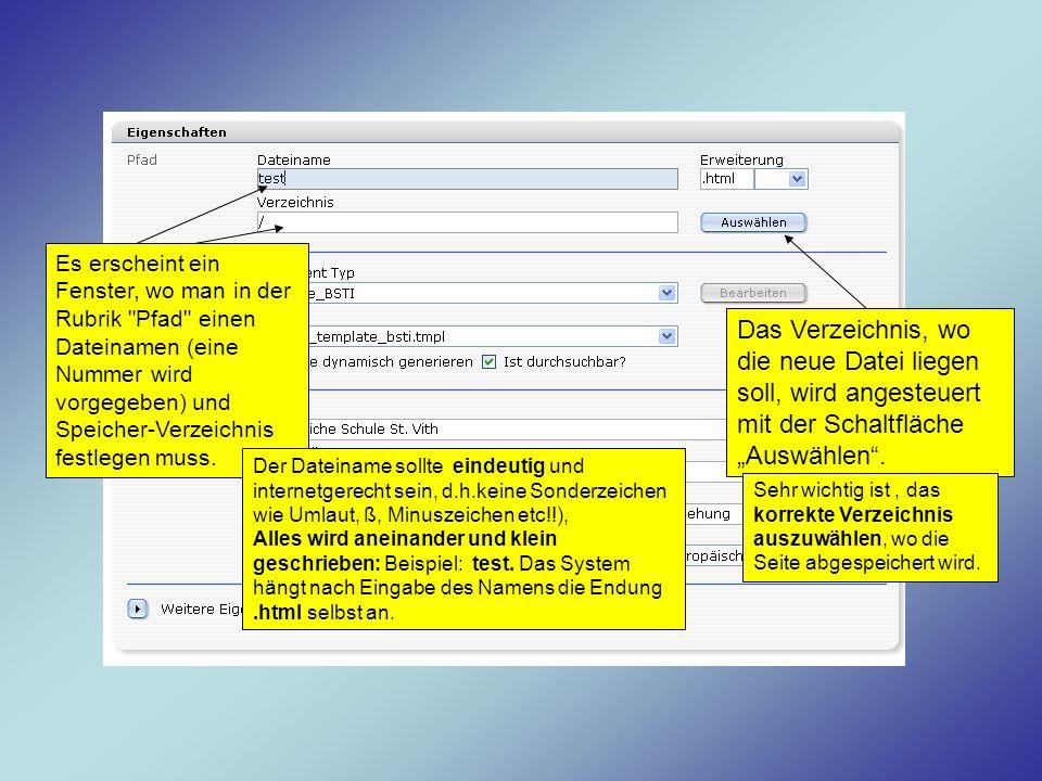 Es erscheint ein Fenster, wo man in der Rubrik Pfad einen Dateinamen (eine Nummer wird vorgegeben) und Speicher-Verzeichnis festlegen muss.