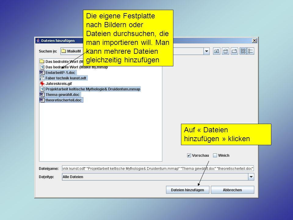 Die eigene Festplatte nach Bildern oder Dateien durchsuchen, die man importieren will. Man kann mehrere Dateien gleichzeitig hinzufügen