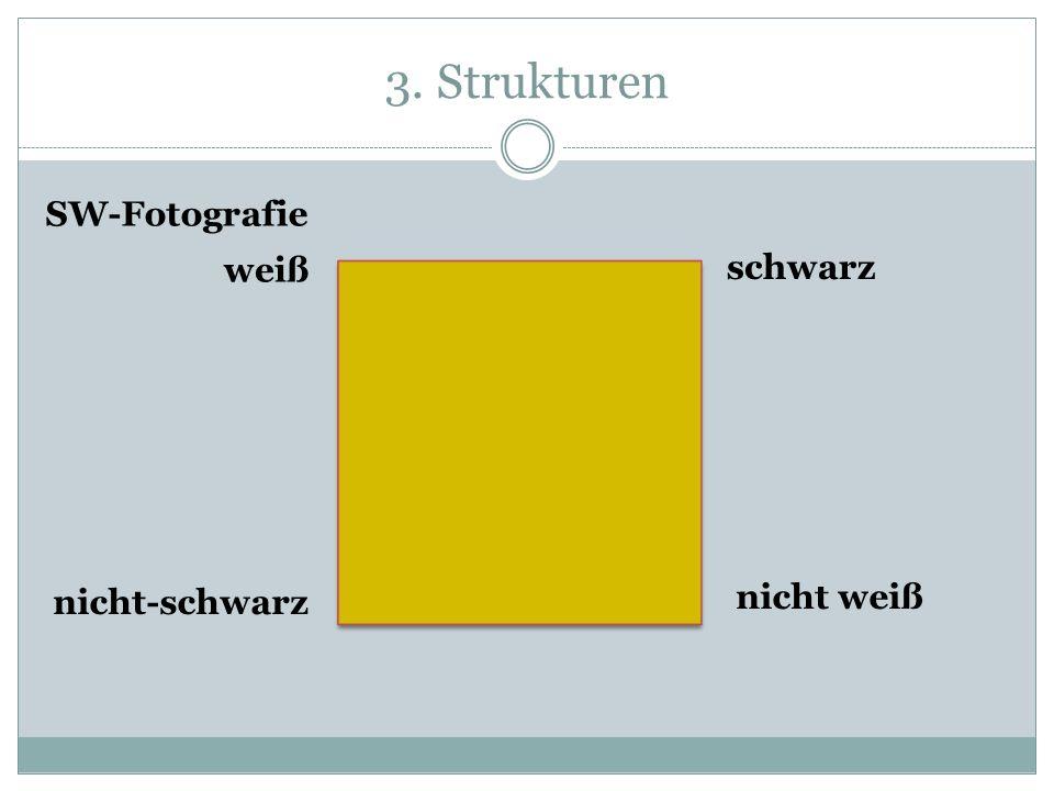 3. Strukturen SW-Fotografie weiß schwarz nicht-schwarz nicht weiß