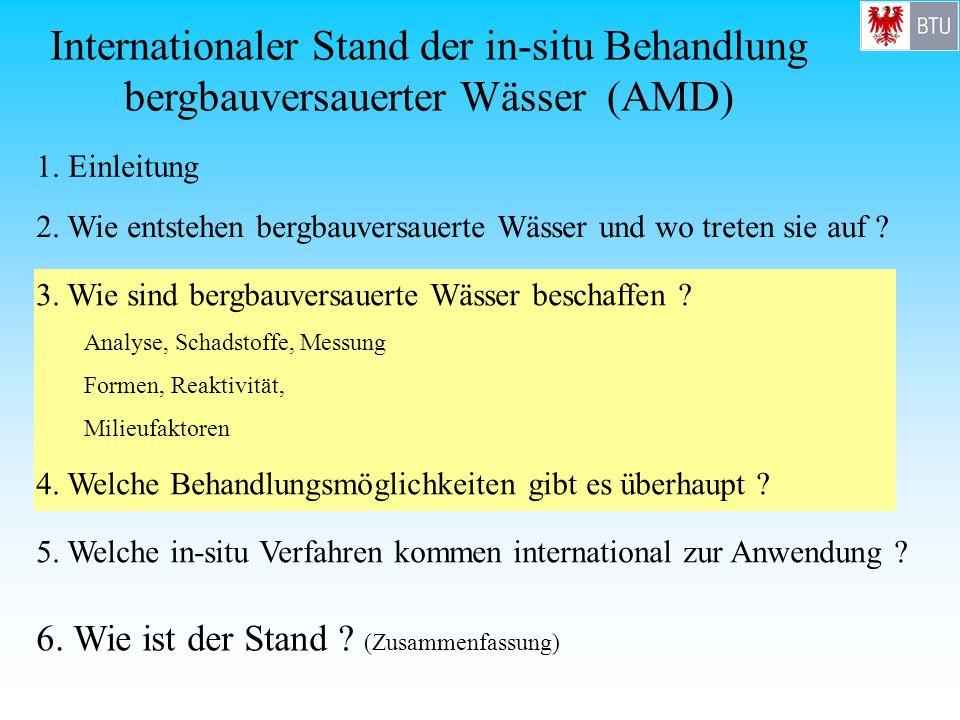 Internationaler Stand der in-situ Behandlung bergbauversauerter Wässer (AMD)