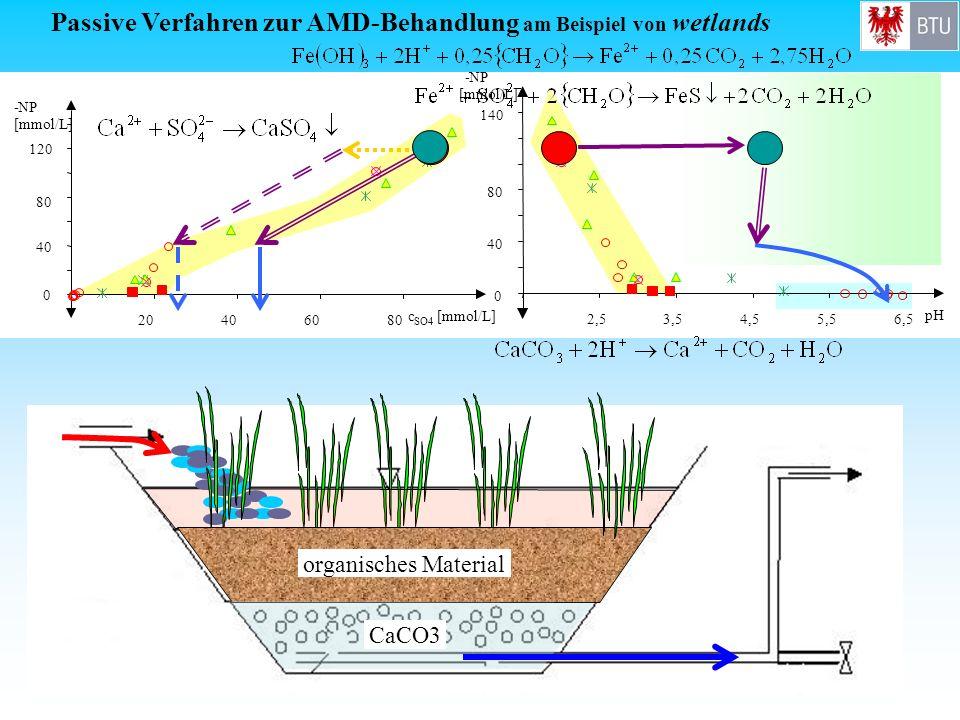 Passive Verfahren zur AMD-Behandlung am Beispiel von wetlands