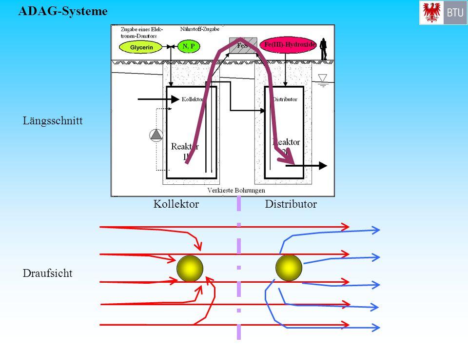 ADAG-Systeme Längsschnitt Kollektor Distributor Draufsicht