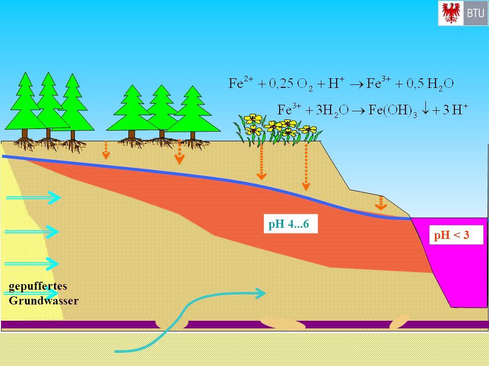 pH 4...6 pH < 3 gepuffertes Grundwasser