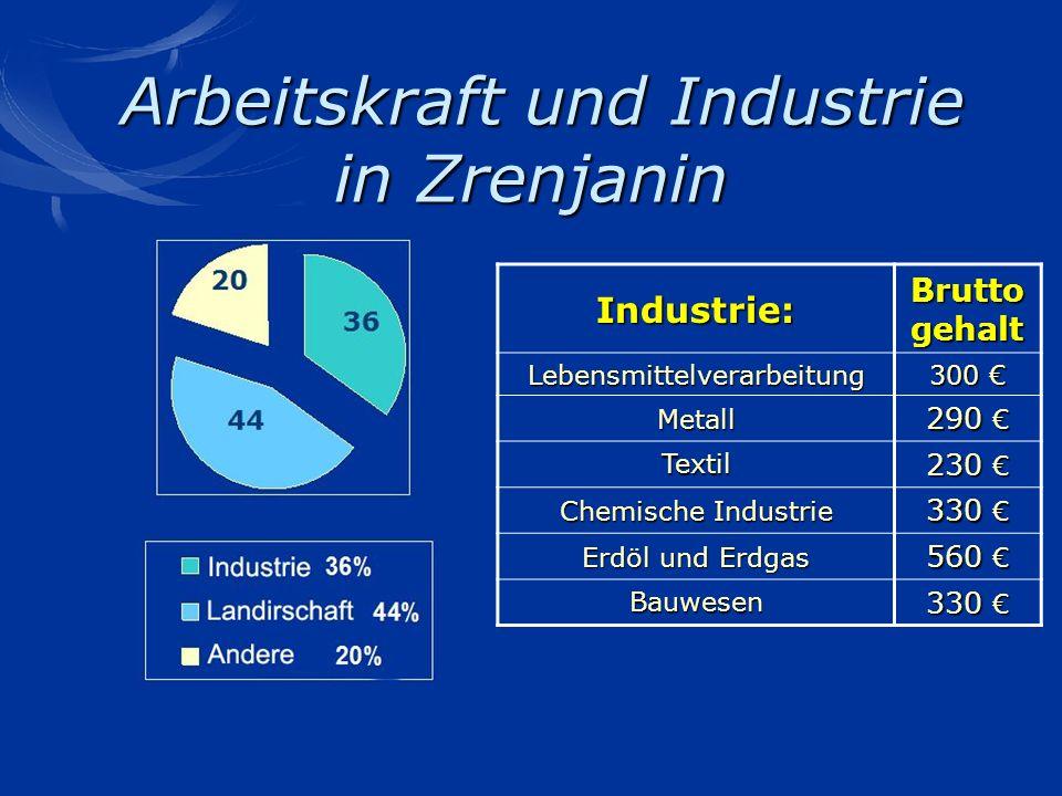 Arbeitskraft und Industrie in Zrenjanin