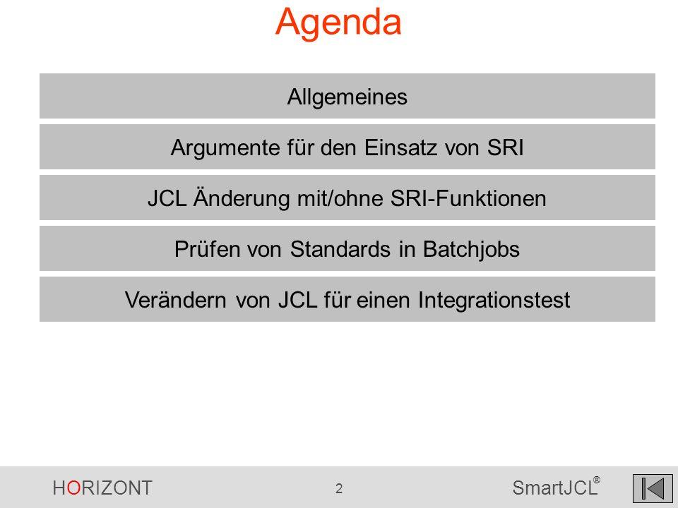 Agenda Allgemeines Argumente für den Einsatz von SRI