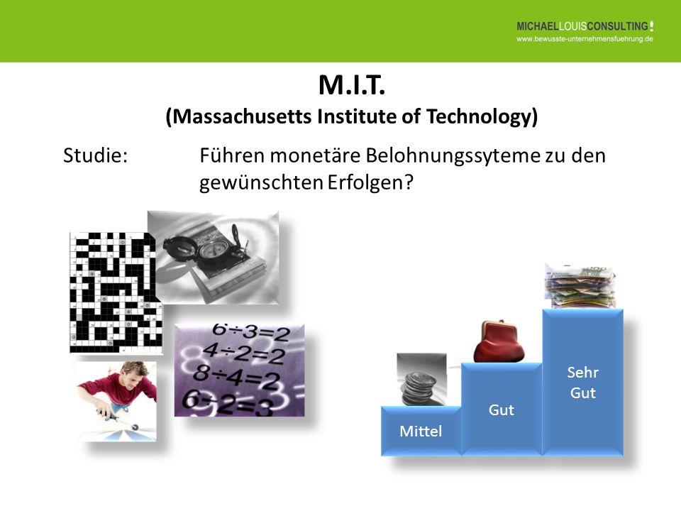M.I.T. (Massachusetts Institute of Technology)