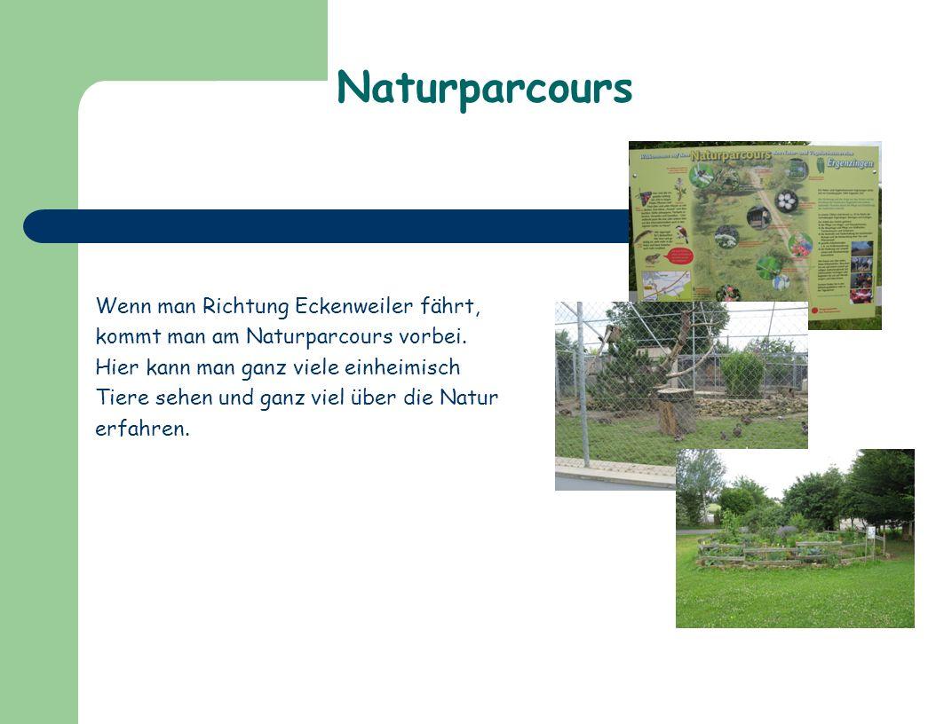 Naturparcours Wenn man Richtung Eckenweiler fährt,