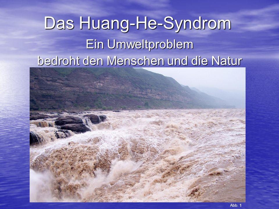Ein Umweltproblem bedroht den Menschen und die Natur