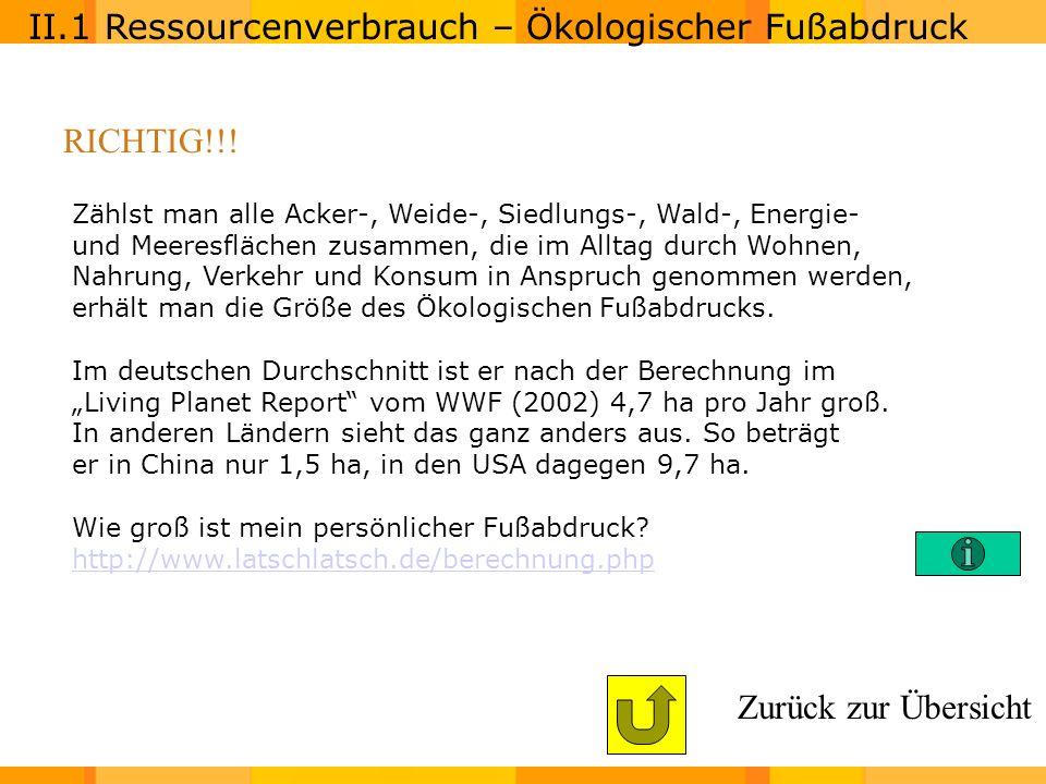II.1 Ressourcenverbrauch – Ökologischer Fußabdruck