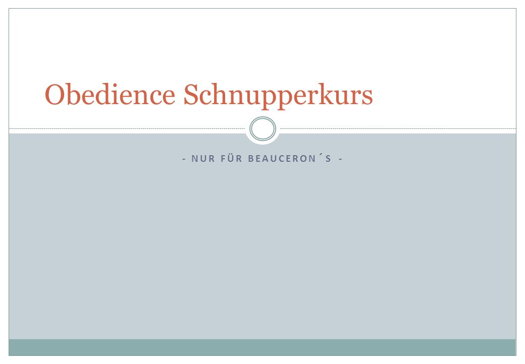 Obedience Schnupperkurs