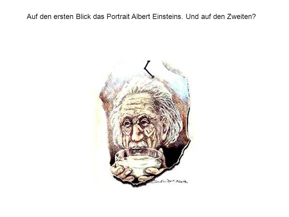 Auf den ersten Blick das Portrait Albert Einsteins. Und auf den Zweiten
