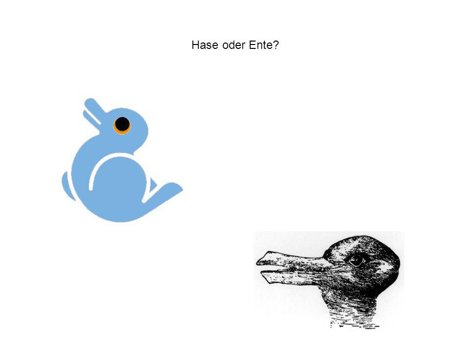 Hase oder Ente