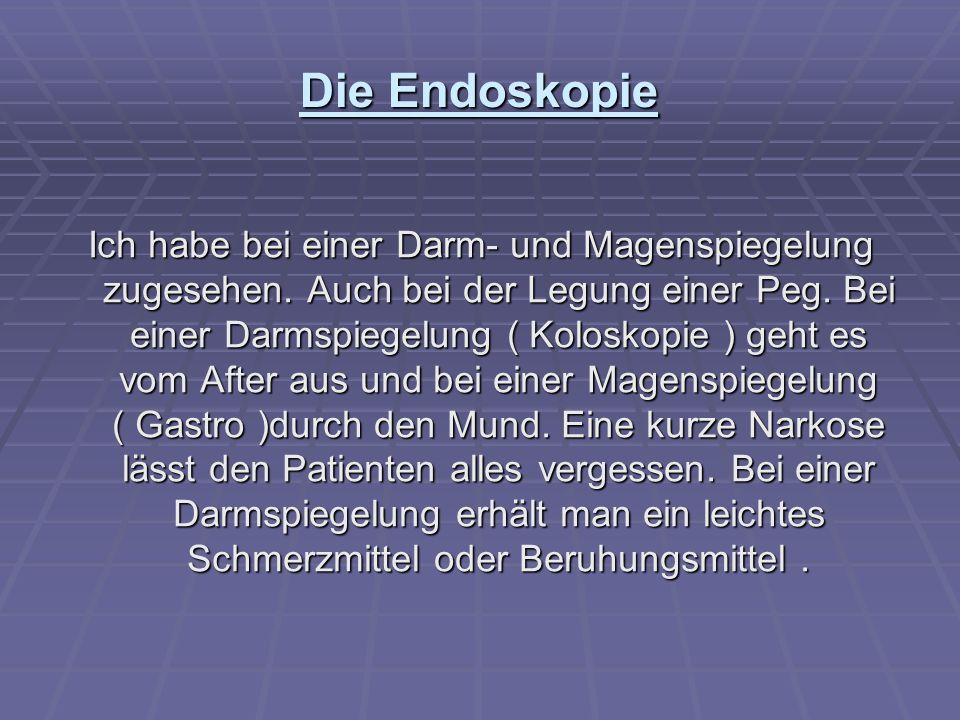Die Endoskopie