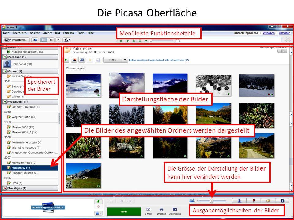 Die Picasa Oberfläche Darstellungsfläche der Bilder
