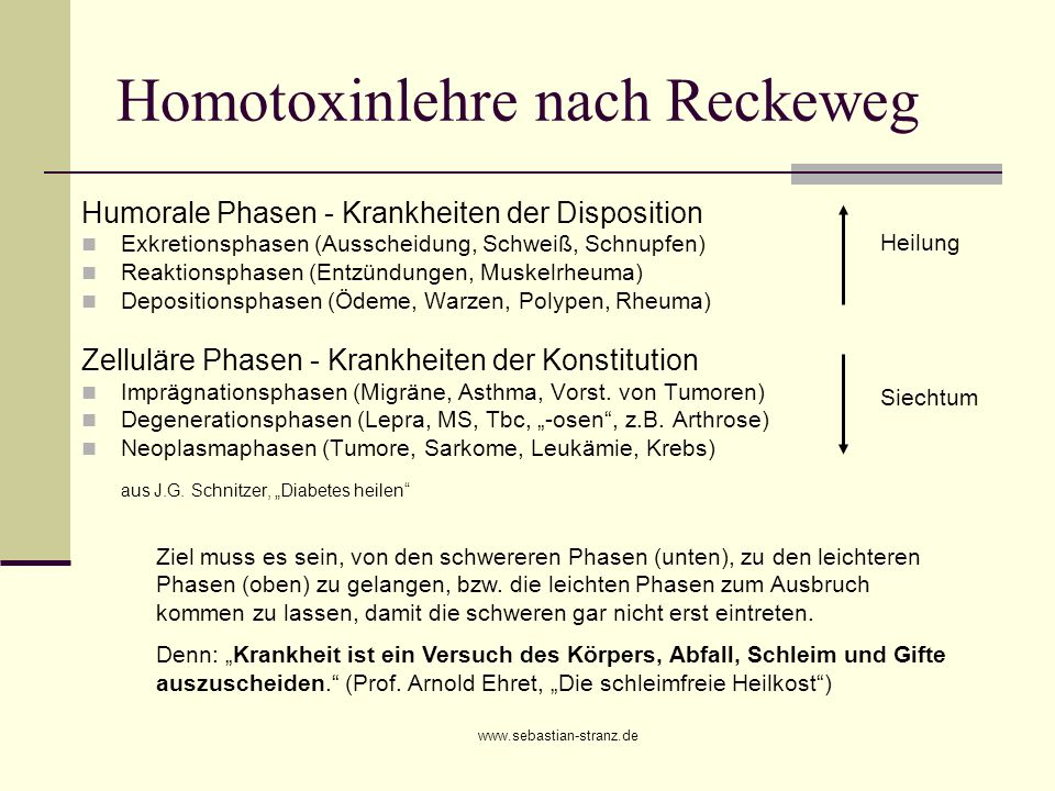 Homotoxinlehre nach Reckeweg
