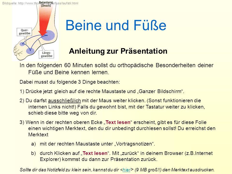 Beine und Füße Anleitung zur Präsentation