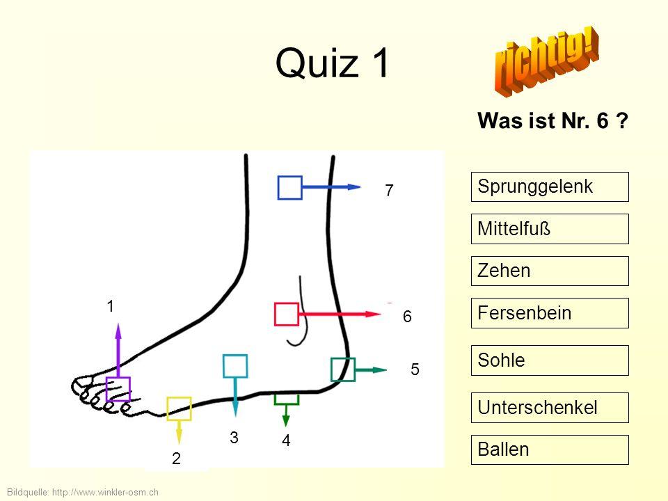 Quiz 1 richtig! Was ist Nr. 6 Sprunggelenk Mittelfuß Zehen