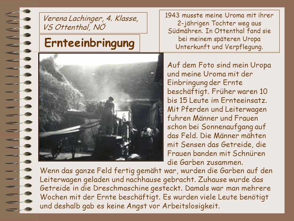 Ernteeinbringung Verena Lachinger, 4. Klasse, VS Ottenthal, NÖ