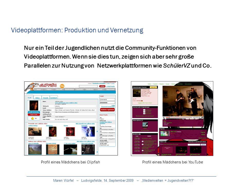 Videoplattformen: Produktion und Vernetzung