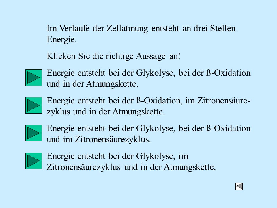 Im Verlaufe der Zellatmung entsteht an drei Stellen Energie.