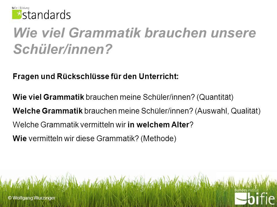Wie viel Grammatik brauchen unsere Schüler/innen