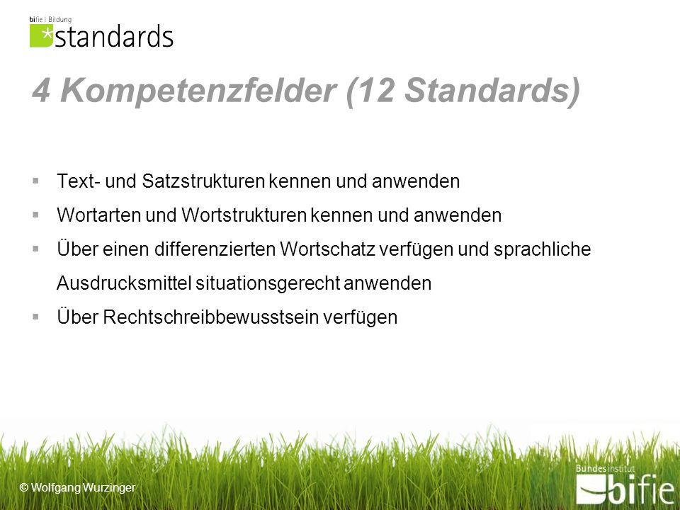 4 Kompetenzfelder (12 Standards)