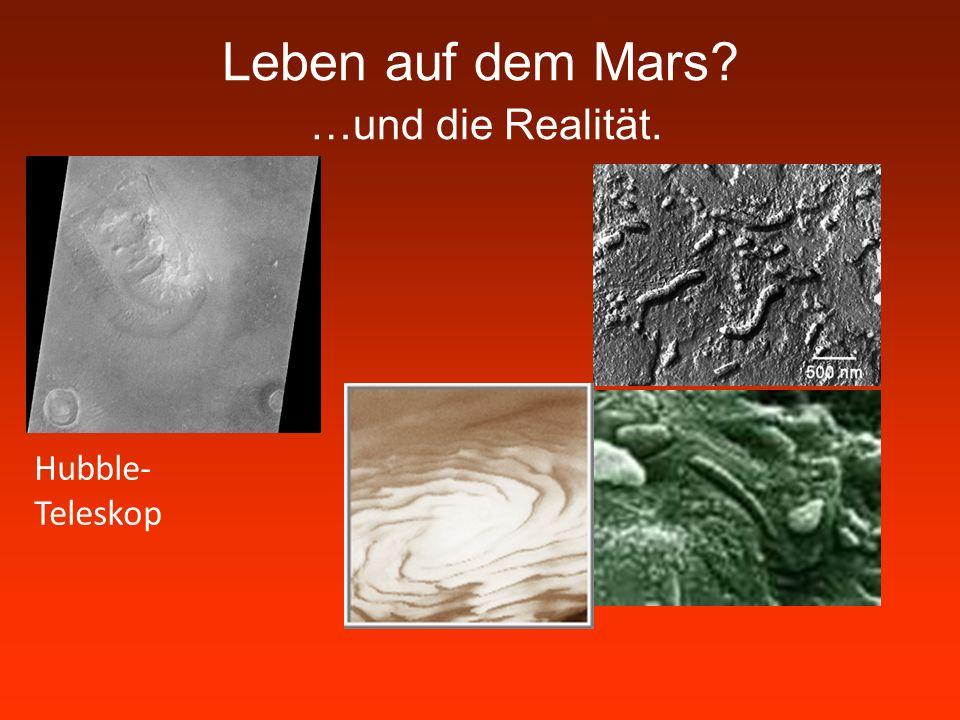 Leben auf dem Mars …und die Realität.