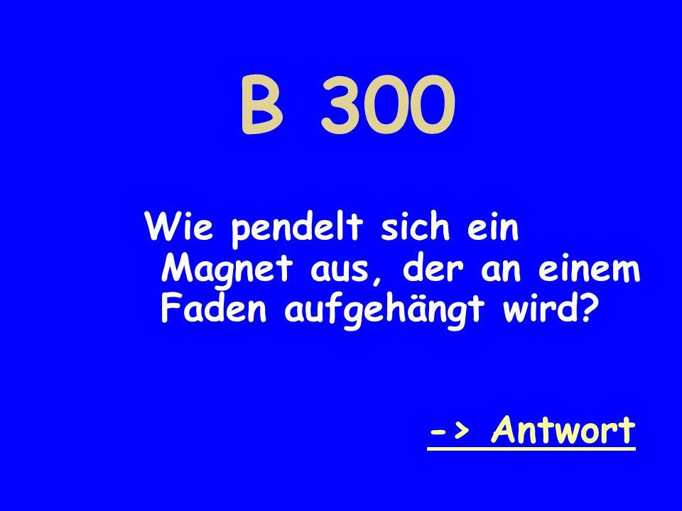 B 300 Wie pendelt sich ein Magnet aus, der an einem Faden aufgehängt wird -> Antwort