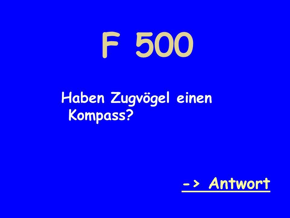 F 500 Haben Zugvögel einen Kompass -> Antwort