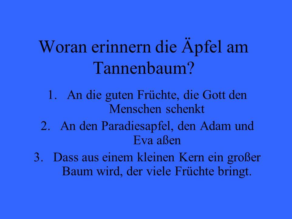 Woran erinnern die Äpfel am Tannenbaum