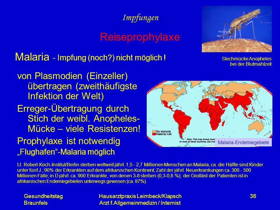 Malaria - Impfung (noch ) nicht möglich !